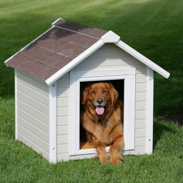 майнкрафт собачьи будки фото картинки готовятся