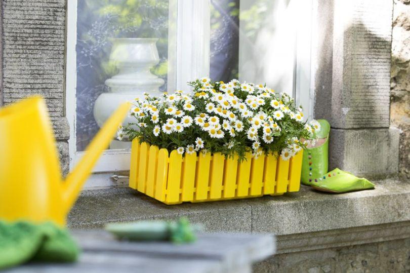Кашпо для Цветов Своими Руками: Инструкция (120  Фото Идей)