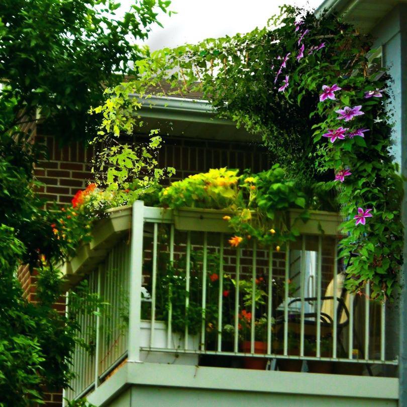 Картинки балкона для частного домашних бесплатно