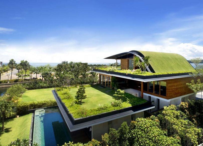Озеленение и благоустройство крыш